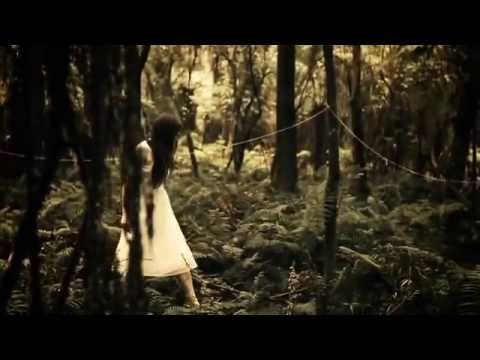 The Paper Kites - Bloom (Official Music Video)